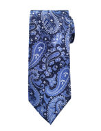 Picture of Ted Baker Paisley Jacquard Silk Tie