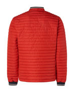 Picture of No Excess Red Puffer Short Jacket