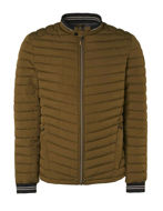 Picture of No Excess Oliver Puffer Short Jacket